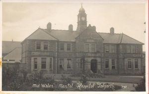 mid wales hospital talgarth.